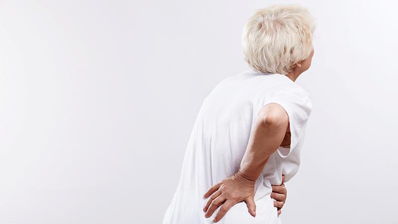 요통-예방-및-개선을-위한-운동법