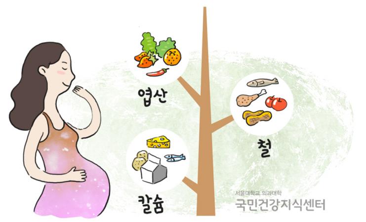 34_현명한-태교의-첫-걸음-임신기간의-영양관리2