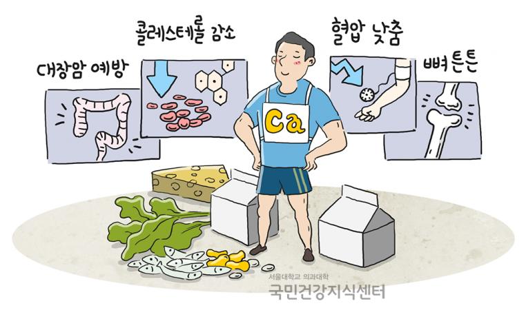 65_칼슘,-한국인에게-아직도-부족한-영양소